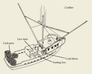 Crab Boat Diagram